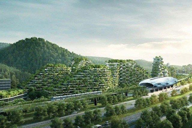 Photo of چین نے دنیا کا پہلا جنگل نما شہر بسانے پر کام شروع کردیا