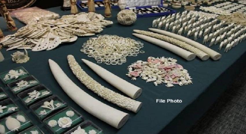 Photo of چینی میں ہاتھی دانت سے بنائی مصنوعات کی تجارت پر پابندی عائد