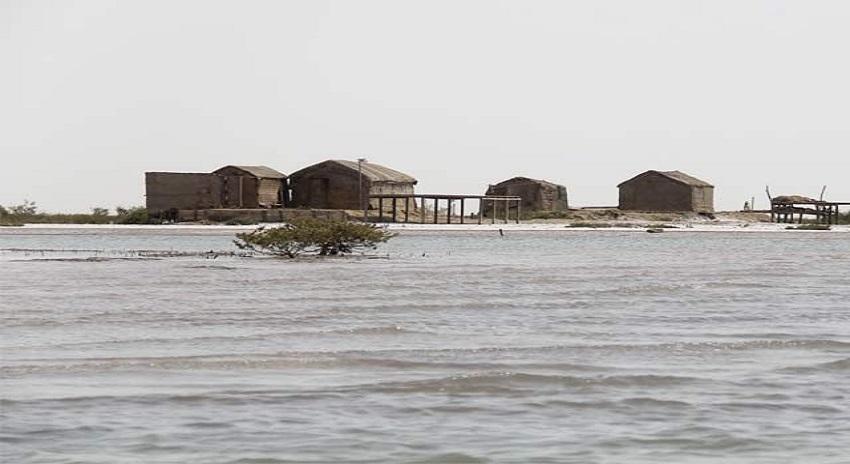 Photo of دریائے سندھ کے مشہور ڈیلٹا تیزی سے ختم ہورہا ہے، اب تک 92 فیصد ختم ہوچکا ہے، لرزا دینے والے حقائق پہ مبنی رپورٹ