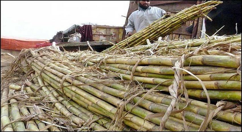 Photo of نادہندہ شوگر ملز کیخلاف کارروائی ، کاشتکاروں کو فوری ادائیگی کیجائے، عدالتی نے حکم جاری کردیا