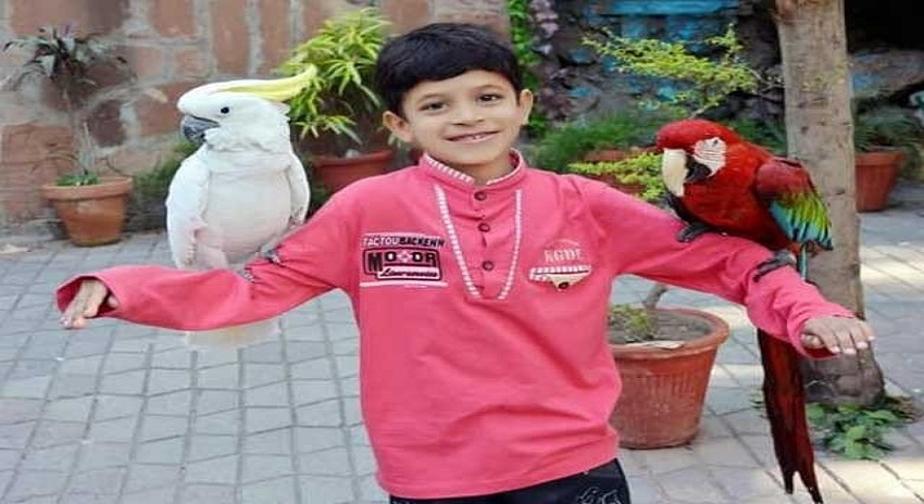 Photo of لاہور میں سیلفیاں بنوانے کے شوقین طوطے