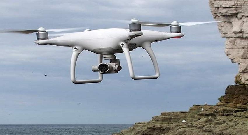 Photo of پلاسٹک میں الجھی وہیل کو بچانے والے ڈرون