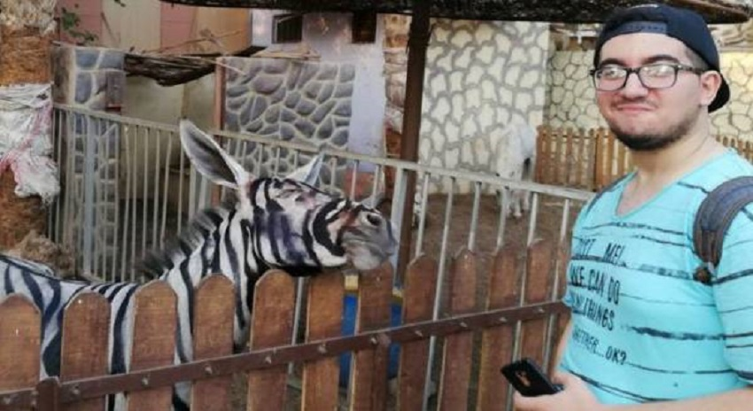 Photo of گدھے کو 'زیبرا' بنا کر پیش کرنے والے چڑیا گھر کا پردہ فاش لیکن دراصل کیسے یہ 'دھاندلی' پکڑی گئی؟ ایسی خبرآگئی کہ آپ کی بھی حیرت کی انتہاء نہ رہے گی