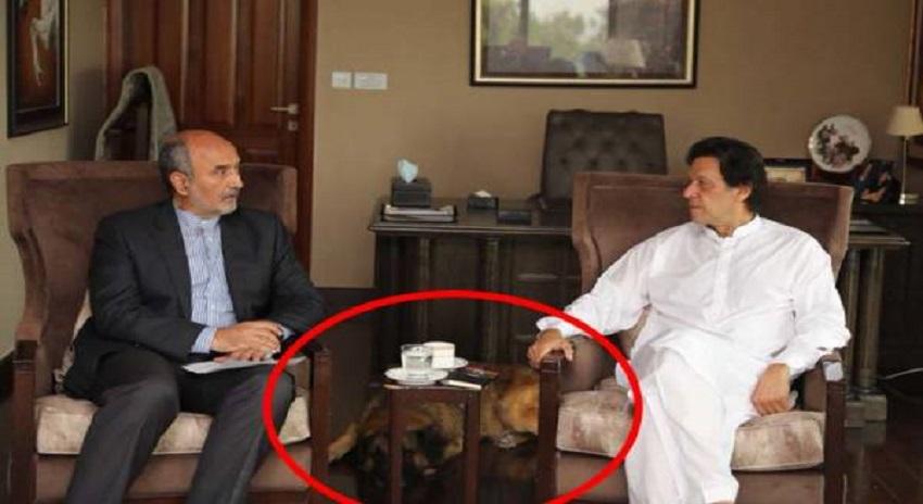 Photo of عمران خان کی ایرانی سفیر سے ملاقات کے دورا ن ان کا کتا ۔۔عمران خان نے ایسا کام کر دیا کہ پاکستانیوں کو یقین نہ آ ئے