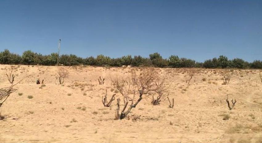 Photo of پانی کی کمی سے نمٹنے کیلئے بلوچستان میں چھوٹے ڈیموں کی تعمیر