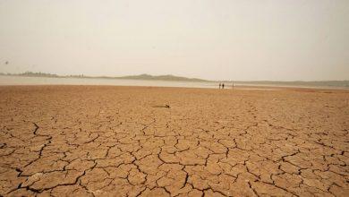Photo of بلوچستان میں خشک سالی نے تباہی مچا دی، 5 لاکھ افراد متاثر