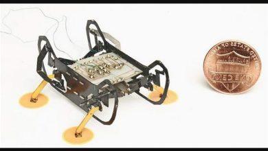 Photo of سکے کے برابر دنیا کا سب سے چھوٹا روبوٹ تیار
