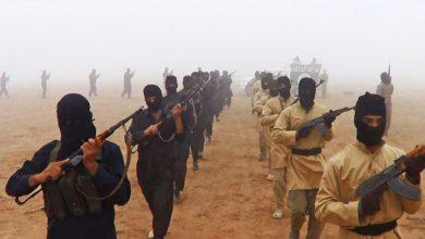 Photo of ہم صرف دعوؤں تک محدود، داعش کی باقیات تیزی سے پھیل رہیں، عراقی رکن پارلیمنٹ