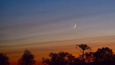 Photo of شوال کا چاند نظر آگیا، عیدالفطر کل بروز بدھ منائی جائے گی