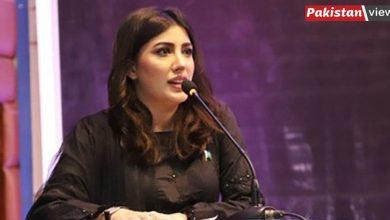 Photo of کشمیر کے لیے لڑتی رہوں گی