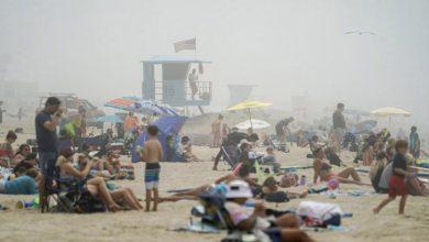 Photo of کیلیفورنیا کے ساحل سمندر پر لوگوں کا ہجوم ہے