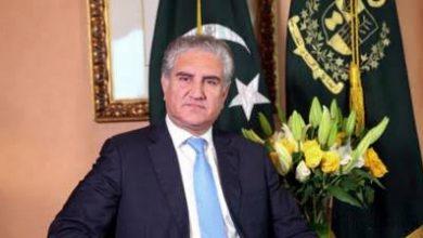 Photo of پاکستان میں کوروناوائرس کی بلندترین سطح کس ماہ میں ہوگی؟ وزیرخارجہ نےخطرےکی گھنٹی بجادی