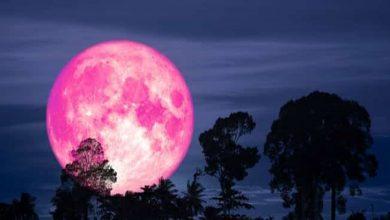 Photo of آج رات گلابی چاند آسمان پر نظر آئے گا