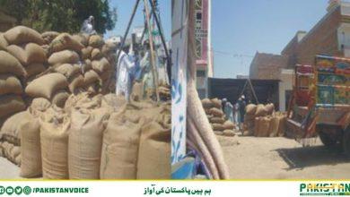 Photo of حکومت سندھ نے سندھ بلوچستان بارڈرسیل کرنے کا فیصلہ کرلیا