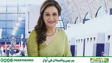 Photo of پاکستانی کورونا وبائی صورتحال کو سنجیدگی سے لیں