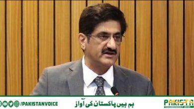 Photo of سندھ میں وبا سے مزید 29مریض انتقال کرگئے