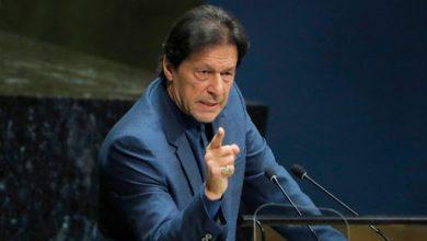 Photo of پاکستان کی تاریخ میں سب سےزیادہ درخت لگانےکاریکارڈبنائیں گے