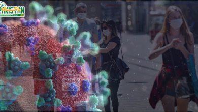 Photo of دنیا بھر میں کورونا وائرس کے وار جاری ہیںِ