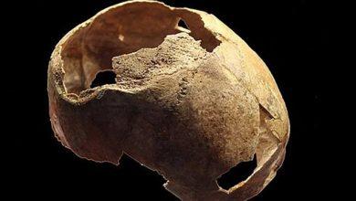 Photo of پانچ ہزار سال قبل آپریشن ہوئی کھوپٹری دریافت