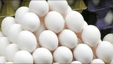 Photo of شہری انتظامیہ بےبس! فارمرز کا سرکاری نرخوں پر انڈے دینے سے انکار