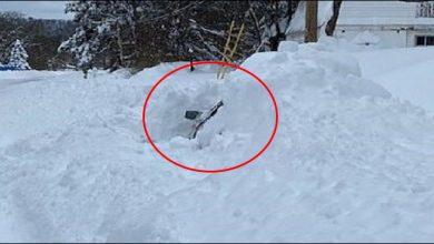 Photo of برف میں پھنسی گاڑی کا ڈرائیور 10 گھنٹے بعد بھی زندہ بچ گیا، ویڈیو وائرل