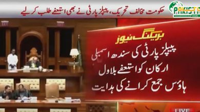 Photo of پی پی قیادت نے ارکان سندھ اسمبلی کو استعفی جمع کرانے کا حکم دے دیا