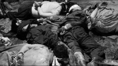 Photo of دہشتگردیوں کی ایک اور کارروائی، مچھ میں 10 ہزارہ کان کن بے دردی سے قتل