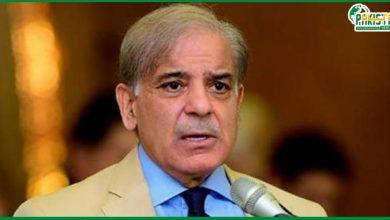 Photo of الیکشن کمیشن نے قائد حزب اختلاف کو لاہور میں سینیٹ الیکشن میں ووٹ کاسٹ کرنے روک دیا