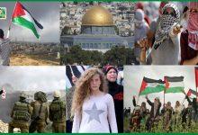 Photo of مزاحمت فلسطین اور فتوحات کا زمانہ