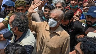 Photo of شہباز شریف نے ضمانت کیلئے عدالت میں درخواست دائر کردی