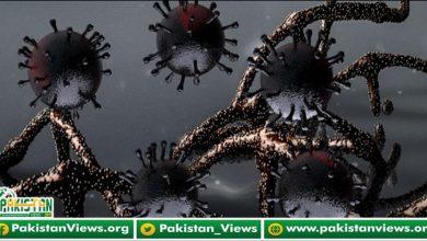 Photo of وبا کی تیسری لہر شدت اختیار کرگئی، مزید 114 افراد جاں بحق
