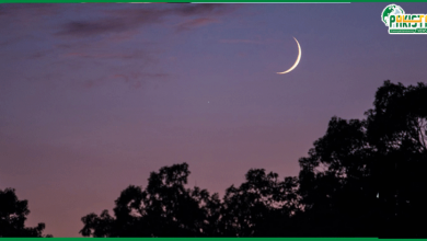 Photo of رمضان المبارک کا چاند دیکھنے کیلئے مرکزی رویت ہلال کمیٹی کا اجلاس کل ہوگا۔