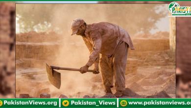 Photo of مزدوروں کی کم سے کم اجرت 20ہزار روپے مقرر ، وزیراعلیٰ پنجاب