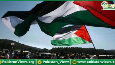 Photo of فلسطین میں اسرائیلی افواج کے مظالم کے خلاف مذمت کرتےہے، گورنرپنجاب