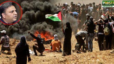 Photo of پاکستانی قوم فلسطین میں جاری مظالم پرسراپا حتجاج ہے