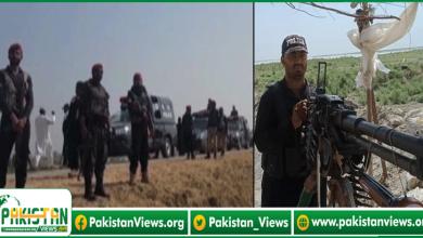 Photo of کچے کے علاقوں میں مشترکہ آپریشن جاری، ڈاکوؤں کے بڑے گروہوں نے بھی اتحاد کر لیا