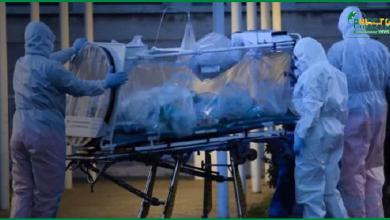 Photo of گزشتہ 24 گھنٹوں کے دوران کرونا وائرس کے 46 مریض کی اموات