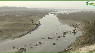 Photo of سندھ آج بھی کم پانی لے رہا ہے، سندھ کے پانی پر ڈاکا ڈالا گیا