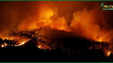 Photo of محدود وسائل کے باعث وسیع رقبے پر لگی آگ بجھانے میں مشکلات کا سامنا