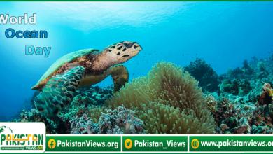 Photo of سمندروں کو پلاسٹک سمیت ہر طرح کی آلودگی سے بچانے کے لیے:سمندروں کا عالمی دن