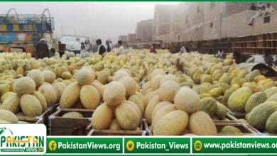 Photo of نجی پھل و سبزی منڈیوں کے لئے قواعد و ضوابط ترتیب