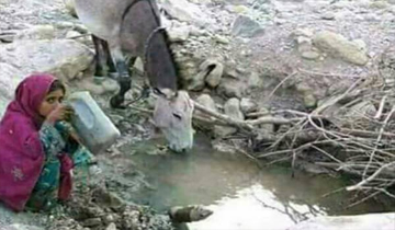 Photo of انسان اور جانور ایک ہی گھاٹ سے پانی پینے پر مجبور