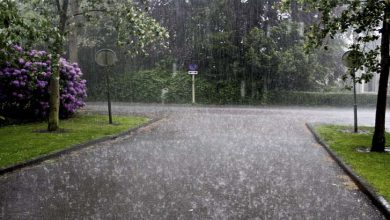 Photo of محکمہ موسمیات نے اکثر علاقوں میں ابر رحمت برسنے کی نوید سنادی