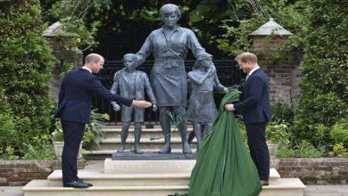 Photo of شہزادہ ولیم اور ہیری نے اپنی ماں کی مجسمے کی رونمائی کی