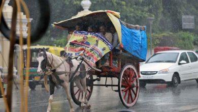 Photo of محکمہ موسمیات نے ملک بھر میں مون سون بارشوں کی پیشگوئی کردی