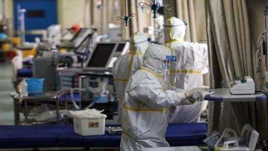Photo of پنجاب میں کورونا وائرس کے کیسز میں اضافہ