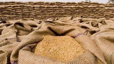 Photo of محکمہ خوراک پنجاب اور فلور ملز مالکان کے درمیان موجود ڈیڈ لاک ختم ہو گیا