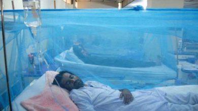 Photo of ڈینگی کے مریضوں کی تعداد میں اضافے کا سلسلہ جاری